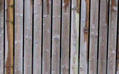 Wood Cladding Texture W01