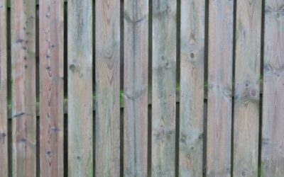 Timber fence texture W03
