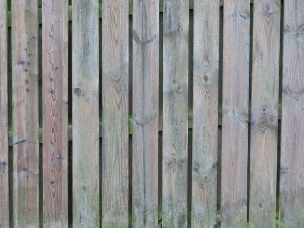 Timber fence texture W03 1