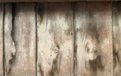 Old Wood Plank Texture W04