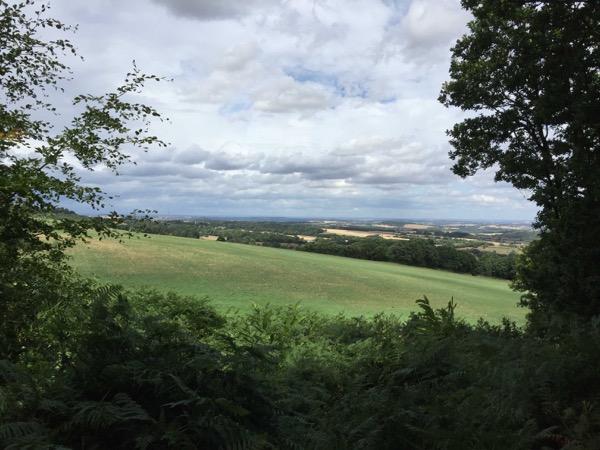 Landscape Fields Background L17 1