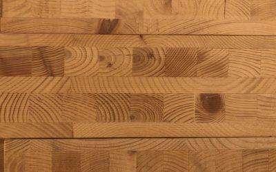 End Grain Wood Texture W26