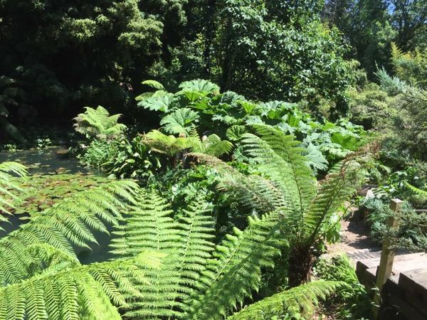 Jungle Texture V11 1