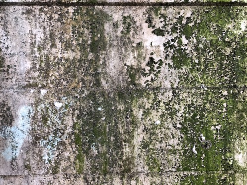 Dirty Concrete Texture C05 1