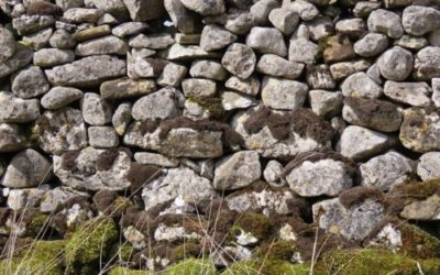 Dry Stone Wall Moss Texture ST21