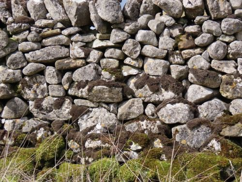 Dry Stone Wall Moss Texture