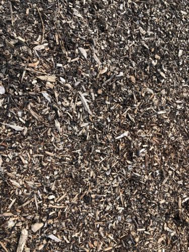 Wood Chippings Texture