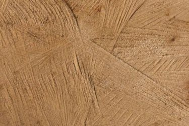 Wood End Grain Texture W029