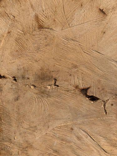 Wood Grain Texture 028