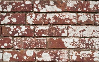 Dirty Brick Texture B13