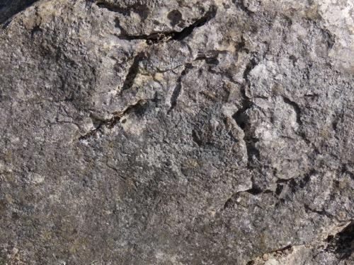 Stone Texture S31