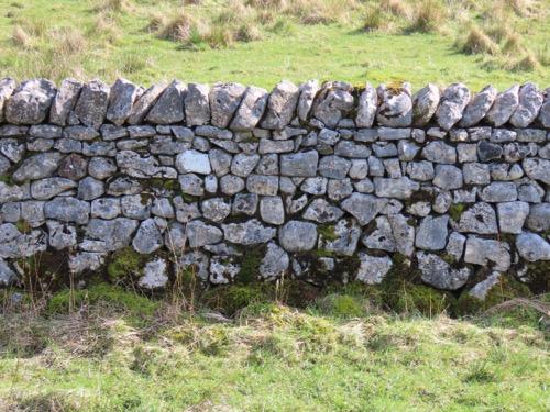Stone Wall Texture S30