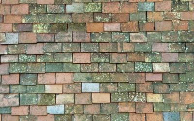 Roof Tiles Texture ST38