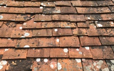 Old Roof Tiles Texture M32