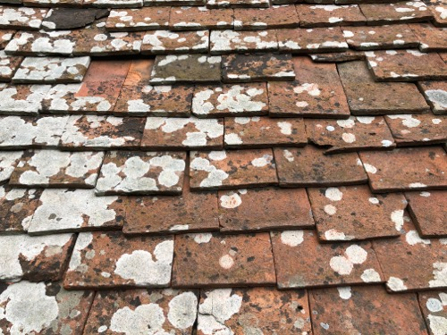 Old Roof Tiles Texture M33