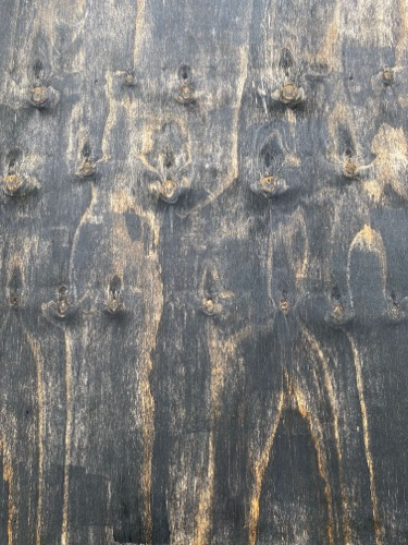Old Woodgrain Panel Texture W36