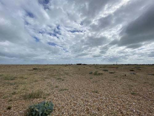 Pebble Beach Landscape L24