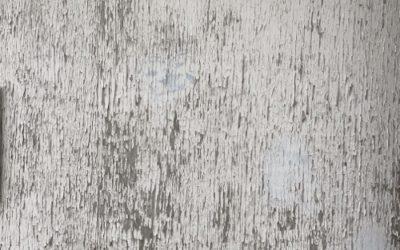 Rough Wall Texture B024
