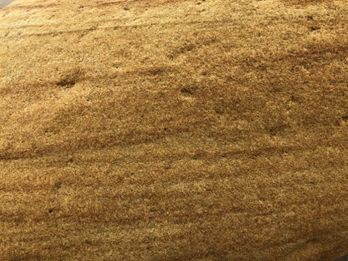 Sand Stone Texture ST48