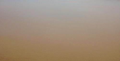 Wet Beach Texture M41