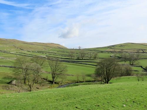 Green fields Landscape L27