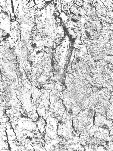 Grunge Texture GRU05