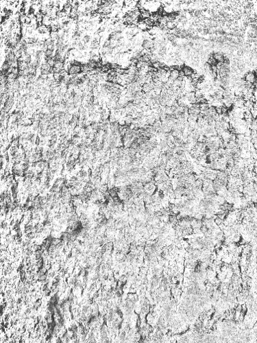 Grunge Texture GRU09