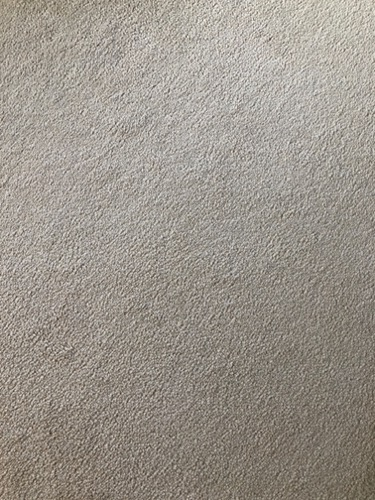 Carpet Texture M43