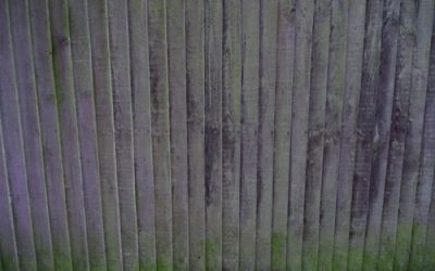 Mossy Wood Fence W47