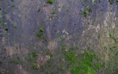Old Concrete texture C15