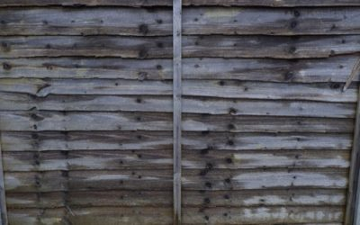 Timber Fence Texture W49