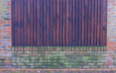 Brick and Timber Wall B46