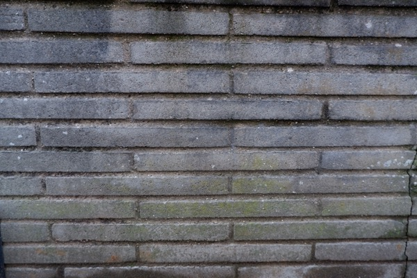 Slim Brick wall Texture B51