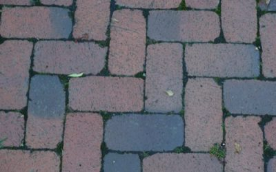 Brick Paving Texture GR40