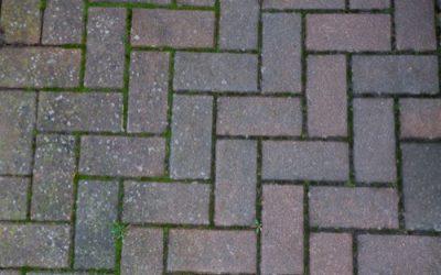 Brick Paving Texture GR45