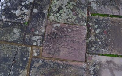 Old Paving Slab Texture GR55