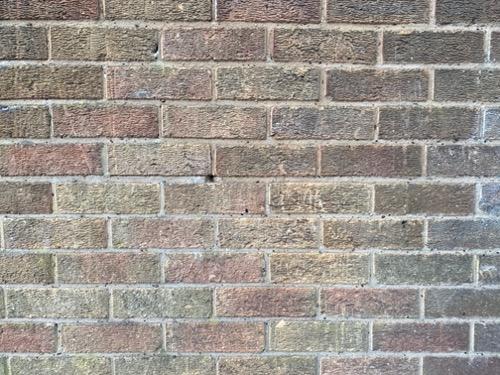 Mixed Brick Wall B61